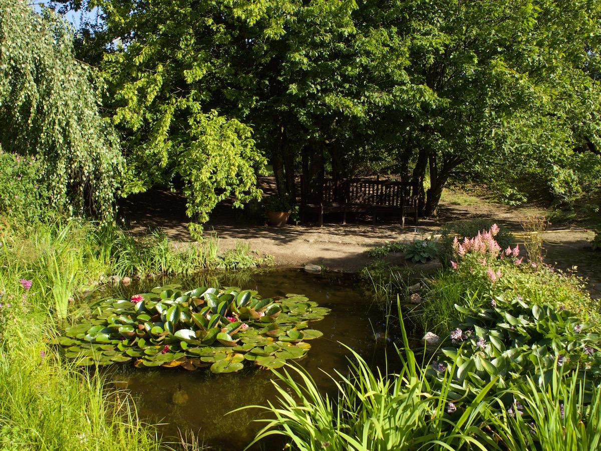 Ogród w pałacu w Galinach