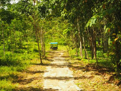 Czy warto pojechać na wyspę Koh Jum w Tajlandii?